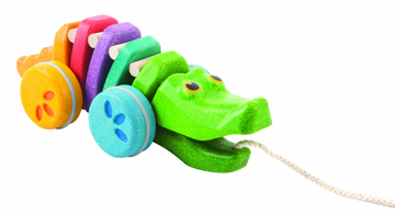 Alligator Regenbogen